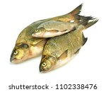 bream  abramis brama  on a...   Shutterstock . vector #1102338476