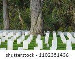 san francisco  california usa   ... | Shutterstock . vector #1102351436