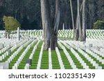 san francisco  california usa   ... | Shutterstock . vector #1102351439
