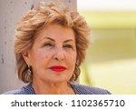 rishon letzion  israel. march...   Shutterstock . vector #1102365710