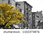 golden fall tree in black and... | Shutterstock . vector #1102373876