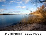 Sandy Lake Shore With Bare...