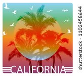 california summer graphic... | Shutterstock .eps vector #1102458644