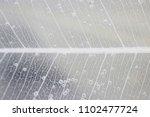 macro structure white delicate... | Shutterstock . vector #1102477724