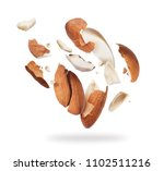 almonds crushed into pieces... | Shutterstock . vector #1102511216