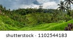 panoramic view of tegallalang... | Shutterstock . vector #1102544183