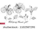 vector set of hand drawing... | Shutterstock .eps vector #1102587290