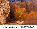bryce canyon national park   Shutterstock . vector #1102700246