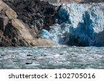 sawyer glacier cruise   Shutterstock . vector #1102705016