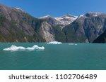 sawyer glacier cruise   Shutterstock . vector #1102706489