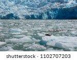 sawyer glacier cruise   Shutterstock . vector #1102707203