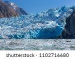 sawyer glacier cruise   Shutterstock . vector #1102716680