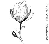 magnolia in a vector style... | Shutterstock .eps vector #1102740143