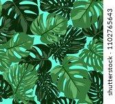 vector monstera leaves.... | Shutterstock .eps vector #1102765643