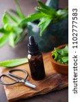 bottle of aloe vera essential... | Shutterstock . vector #1102777583