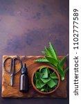 bottle of aloe vera essential...   Shutterstock . vector #1102777589
