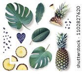 Elements Isolated Tropical Leaves Pineapple - Fine Art prints