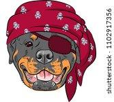 Vector Dog Rottweiler Pirate ...