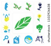 set of 13 icons such as big...