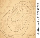 topographic map on light brown... | Shutterstock .eps vector #1102959269