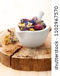medicinal herbs and flowers in... | Shutterstock . vector #1102967570