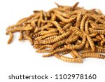 Small photo of fried worms seasoned with garlic and herbs, on a white background