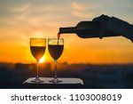 female hand with bottle pours... | Shutterstock . vector #1103008019