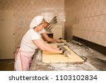 woman baker working in bakery... | Shutterstock . vector #1103102834