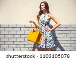 beautiful brunette young woman... | Shutterstock . vector #1103105078