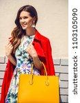beautiful brunette young woman... | Shutterstock . vector #1103105090