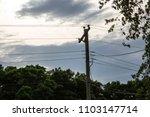 silhouette of power lines... | Shutterstock . vector #1103147714