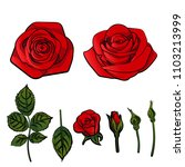 Stock vector red rose isolated on white 1103213999
