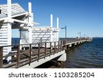 panoramic view of the woody... | Shutterstock . vector #1103285204