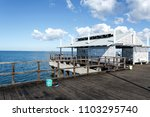 woody point  australia   may 30 ... | Shutterstock . vector #1103295740