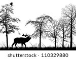 male stag deer | Shutterstock . vector #110329880