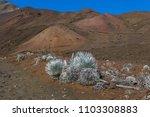 haleakala national park   Shutterstock . vector #1103308883