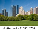 sheep meadow in central park... | Shutterstock . vector #1103316734