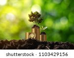 young plant in soil on the top... | Shutterstock . vector #1103429156