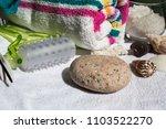 set for spa procedures and... | Shutterstock . vector #1103522270