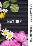 nature sign background      | Shutterstock . vector #1103594609
