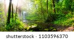 sunrise in the forest with... | Shutterstock . vector #1103596370