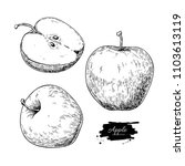 apple drawing. hand drawn fruit ... | Shutterstock . vector #1103613119