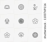 flowers line icon set with... | Shutterstock .eps vector #1103769116