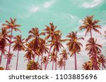 coconut palm trees   tropical... | Shutterstock . vector #1103885696