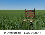 mahogany chair with a golden...   Shutterstock . vector #1103892644
