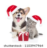 Stock photo pembroke welsh corgi puppy and kitten in red christmas hats sitting with gift box isolated on 1103947964