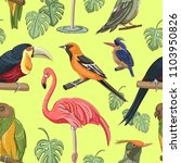 exotic colorful birds pattern | Shutterstock .eps vector #1103950826