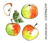 apples painted in watercolor on ... | Shutterstock . vector #1103986259