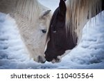 two horses move their heads... | Shutterstock . vector #110405564