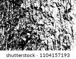grungy wooden texture. rough... | Shutterstock .eps vector #1104157193